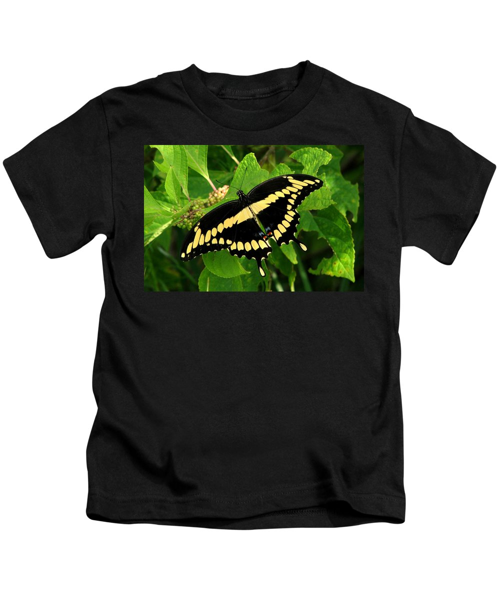 Nature Kids T-Shirt featuring the photograph Giant by Peg Urban