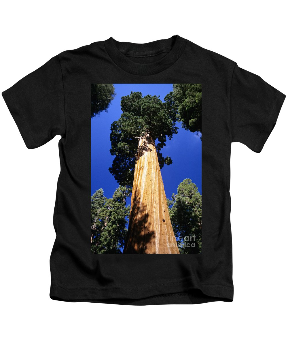 Beautiful Kids T-Shirt featuring the photograph Giant Sequoia by Michael Howell - Printscapes