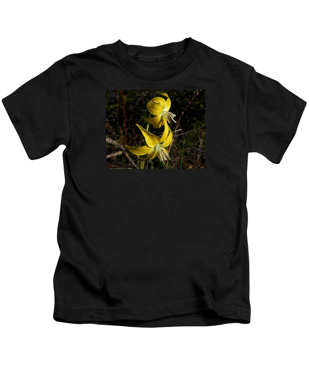 Erythronium Grandiflorum Kids T-Shirt featuring the photograph Glacier Lily 2 by Whispering Peaks Photography
