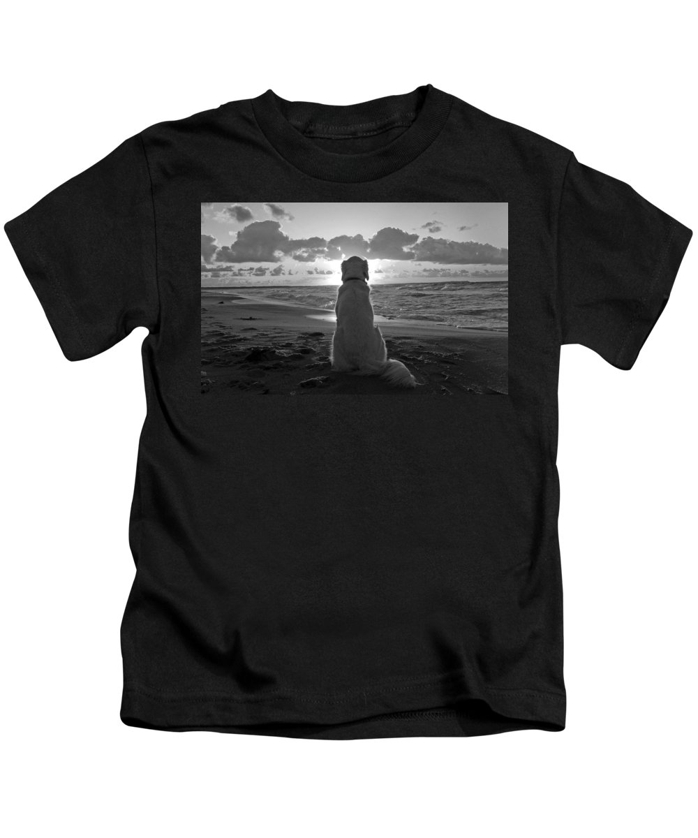 Dog Kids T-Shirt featuring the photograph Golden Labrador Watching Sunset by Sumit Mehndiratta