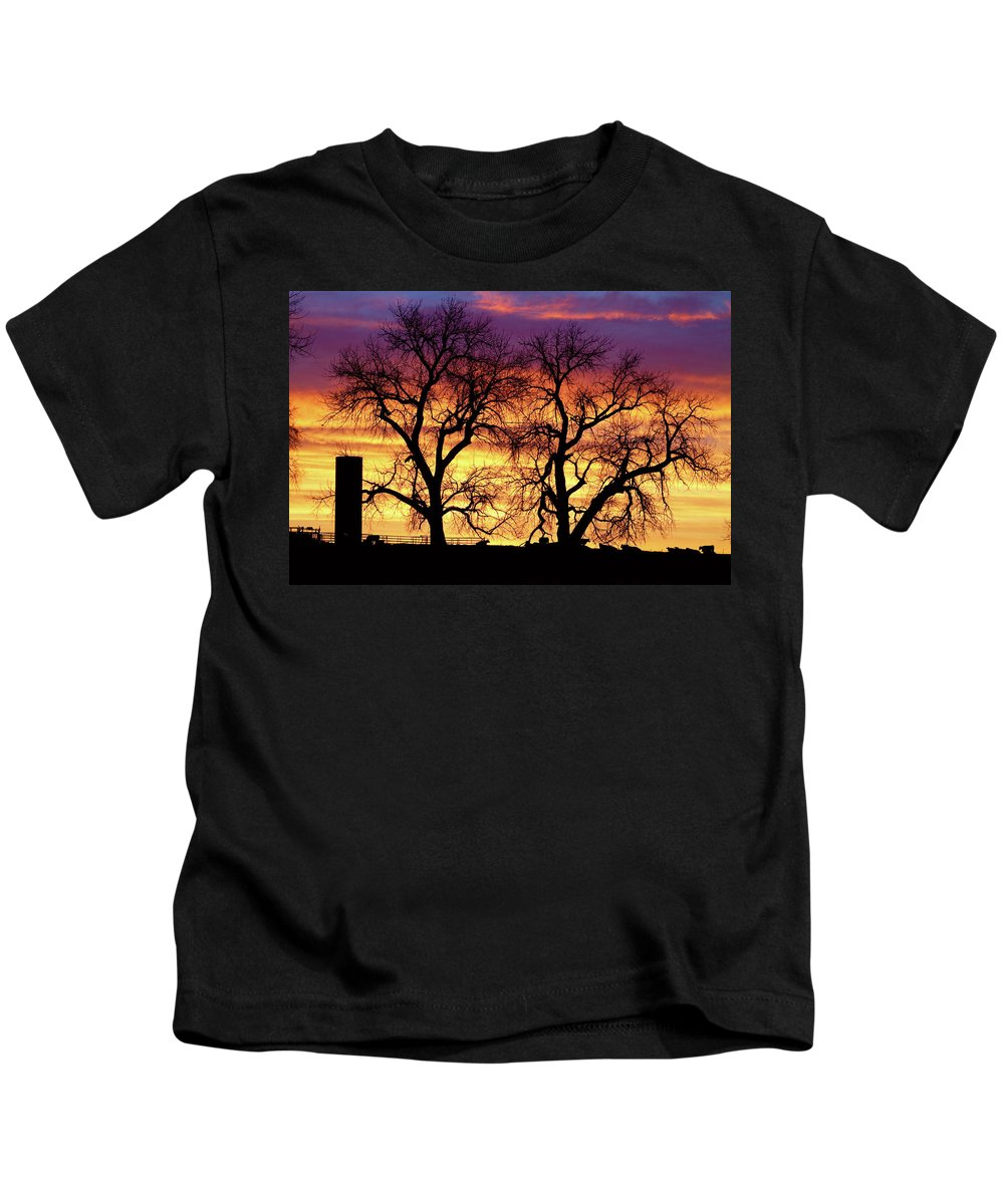 Cows Kids T-Shirt featuring the photograph Good Morning Cows Colorful Sunrise by James BO Insogna