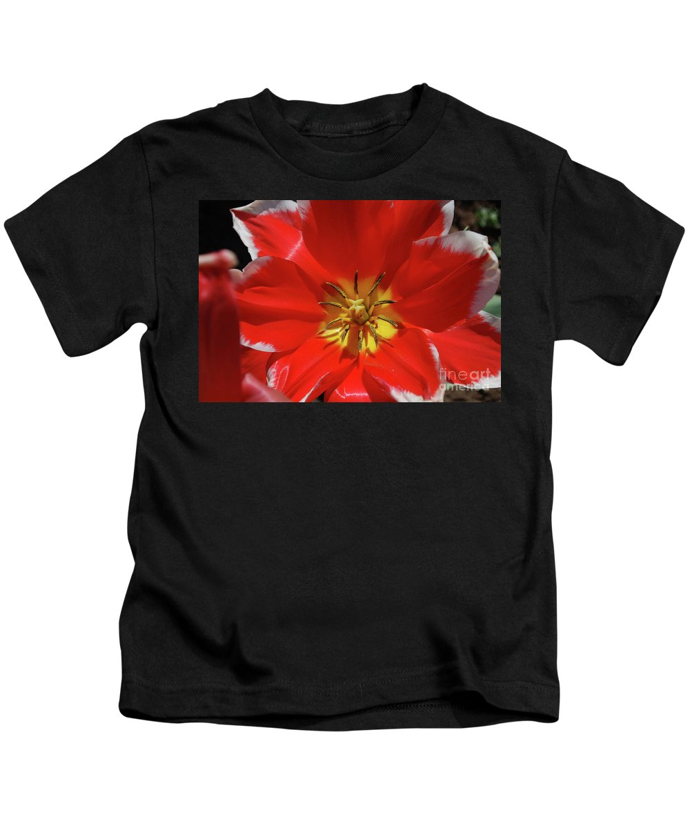 Tulip Kids T-Shirt featuring the photograph Gorgeous Flowering Red Tulip With A Yellow Center by DejaVu Designs