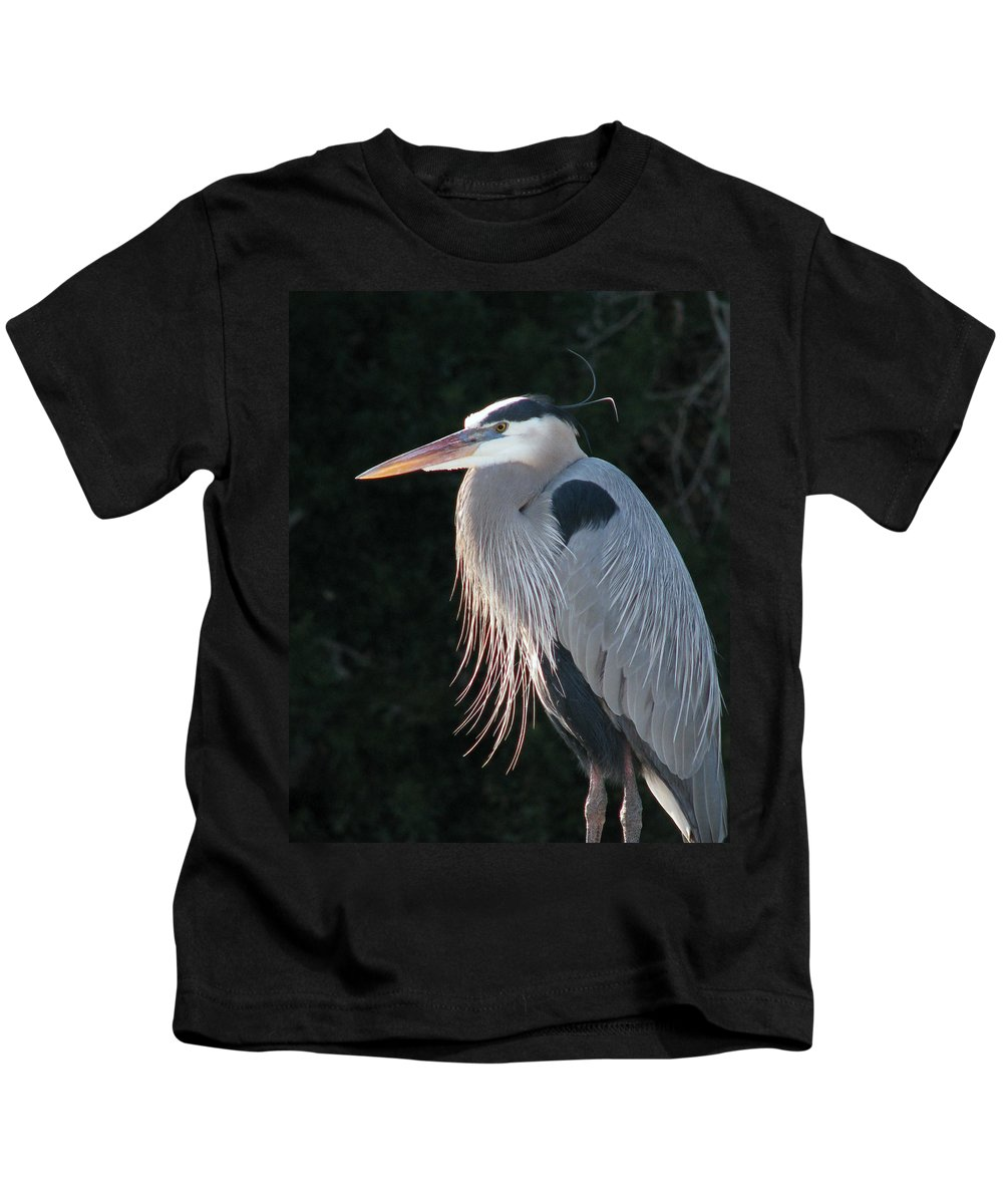 Nature Kids T-Shirt featuring the photograph Great Blue At Rest by Peg Urban