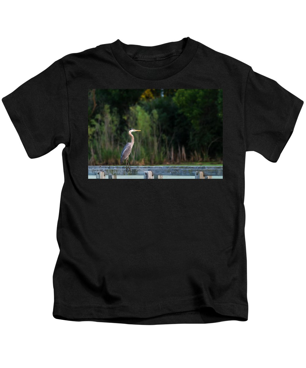 Great Blue Heron Kids T-Shirt featuring the photograph Great Blue Heron On A Handrail by Edward Peterson