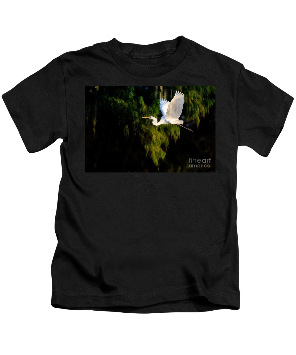 Great Egret Kids T-Shirt featuring the photograph Great Egret by Matt Suess