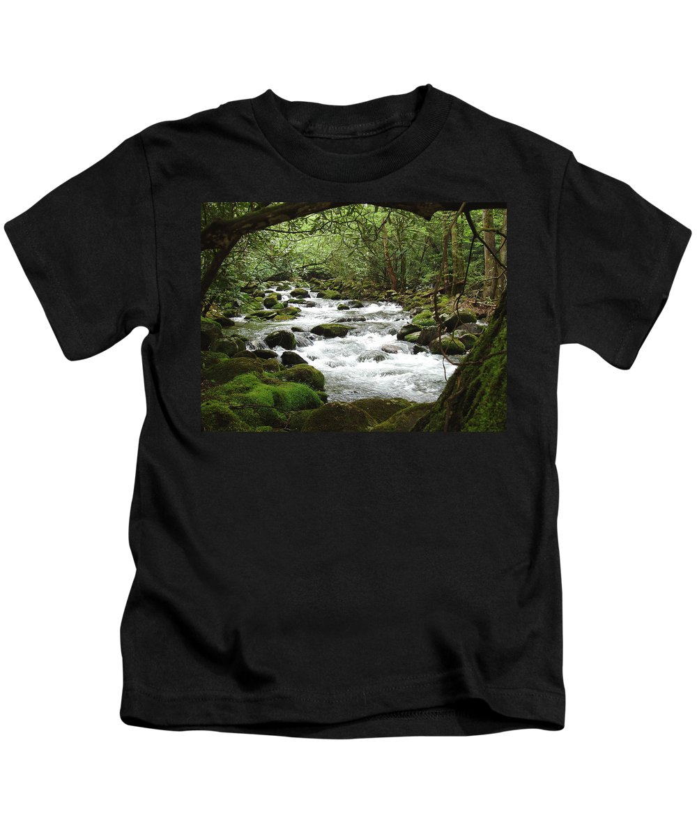 Smoky Mountains Kids T-Shirt featuring the photograph Greenbrier River Scene 2 by Nancy Mueller