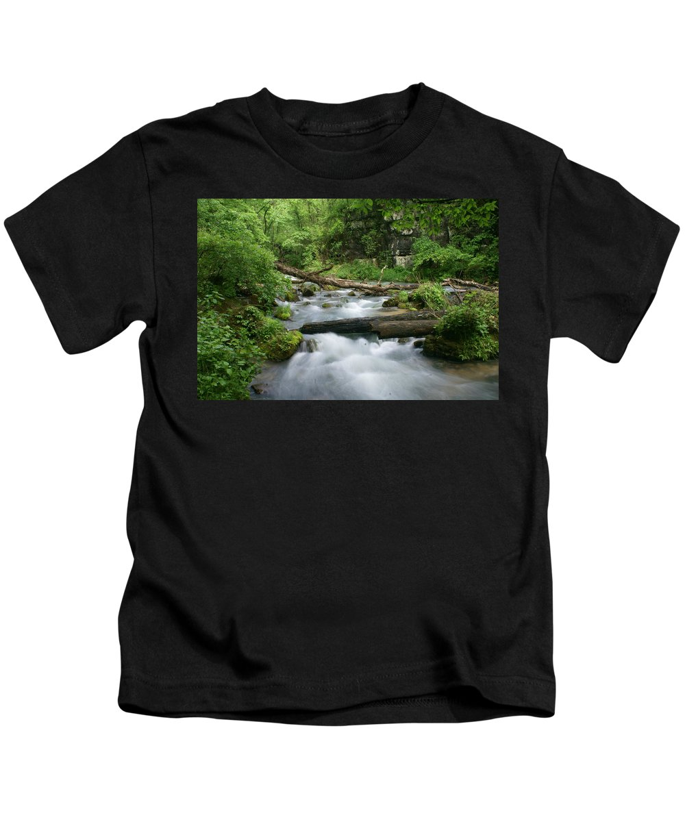 Greer Spring Kids T-Shirt featuring the photograph Greer Spring Branch 1 by Marty Koch