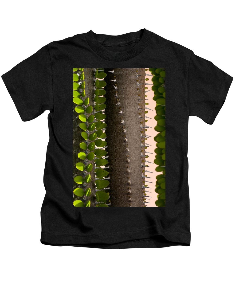 Cactus Kids T-Shirt featuring the photograph Growth Contrast 2 by Kelley King