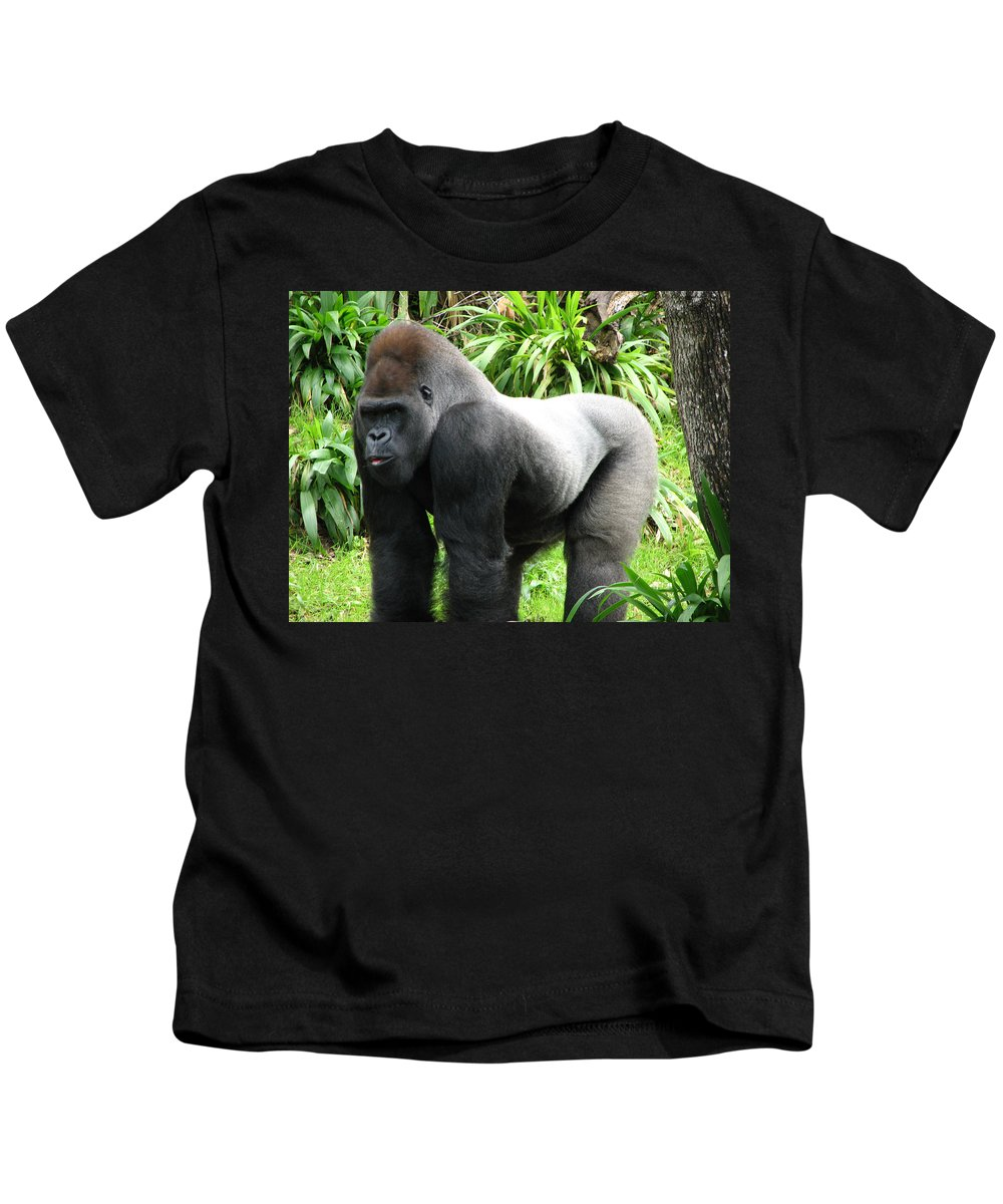 Gorilla Kids T-Shirt featuring the photograph Grumpy Gorilla II by Stacey May