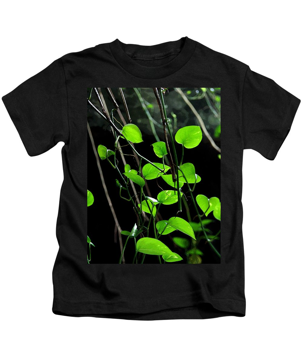 Plants Kids T-Shirt featuring the photograph Hanging Vines by Joe Kozlowski