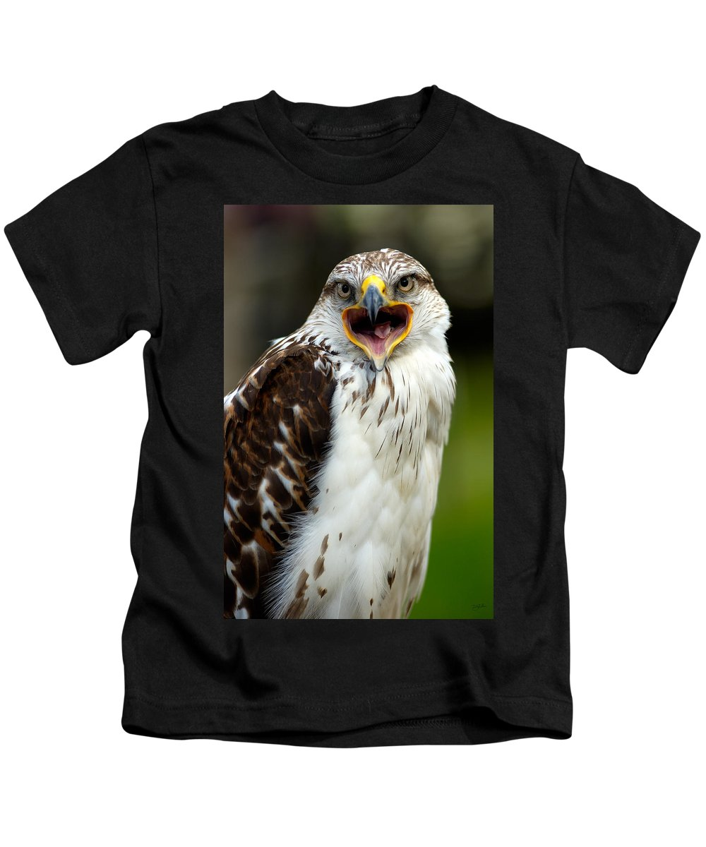 Hawk Kids T-Shirt featuring the photograph Hawk by Doug Gibbons