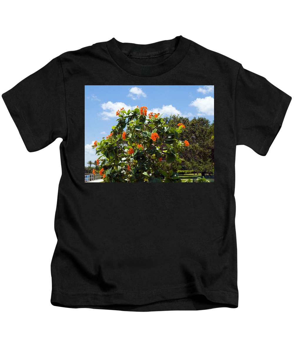 Hibiscus; Rosasinensis; Rosa; Sinensis; Rosa-sinensis; Tree; Bush; Shrub; Plant; Flower; Flowers; Fl Kids T-Shirt featuring the photograph Hibiscus Rosasinensis With Fruit by Allan Hughes