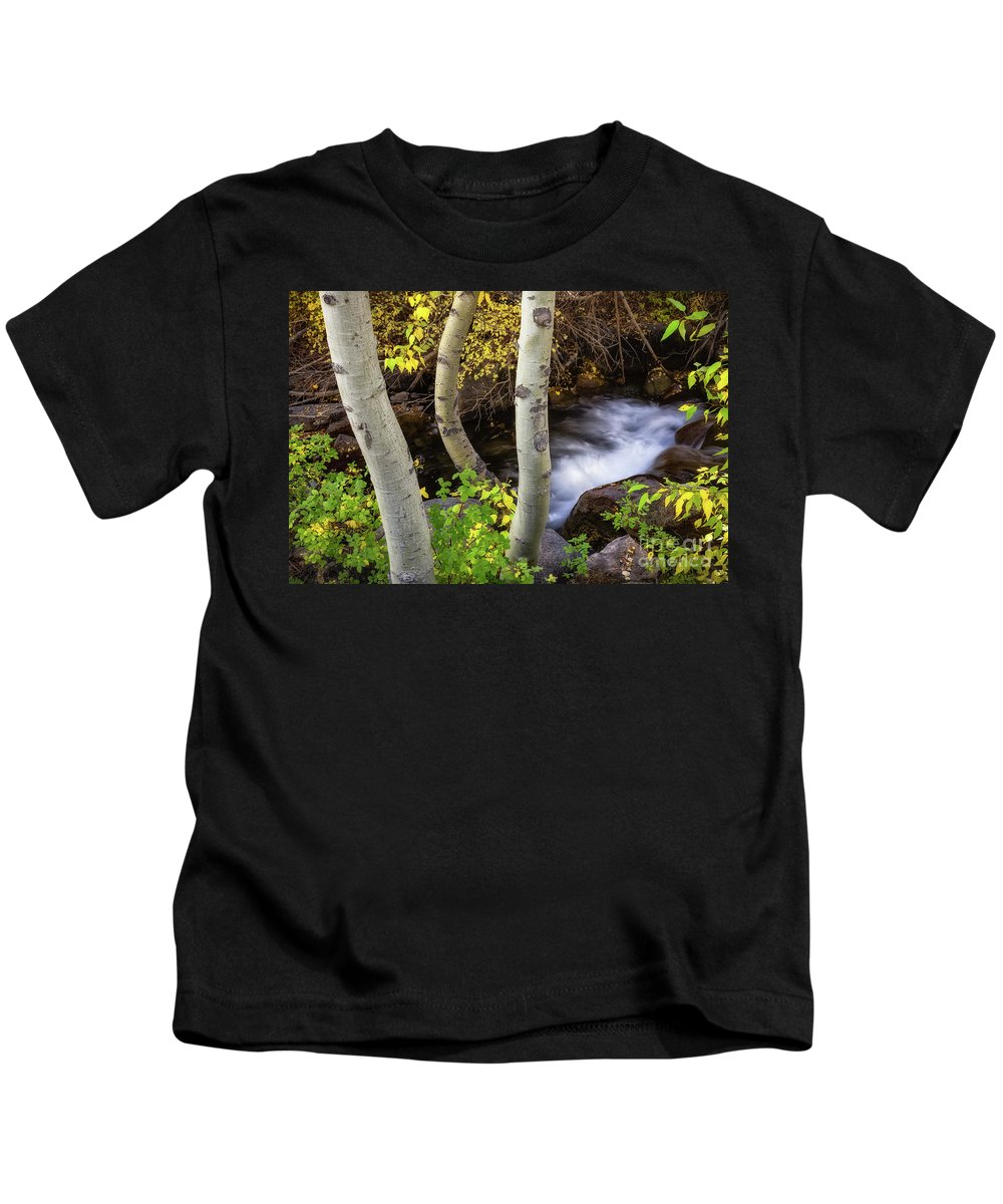 Aspens Kids T-Shirt featuring the photograph Hidden Stream by Anthony Bonafede