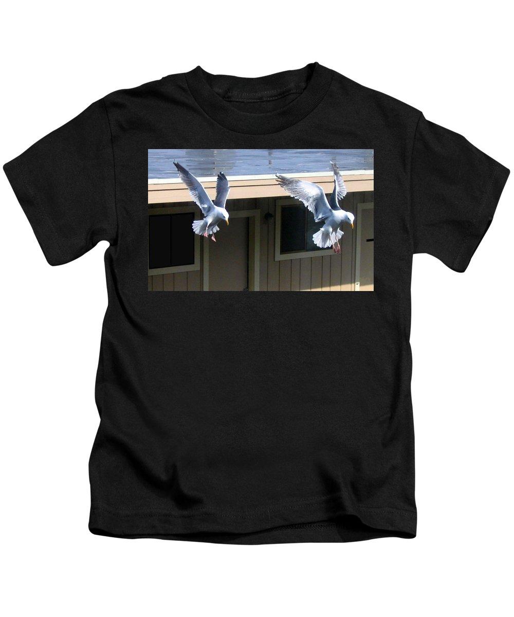 Seagulls Kids T-Shirt featuring the photograph High Spirits by Will Borden