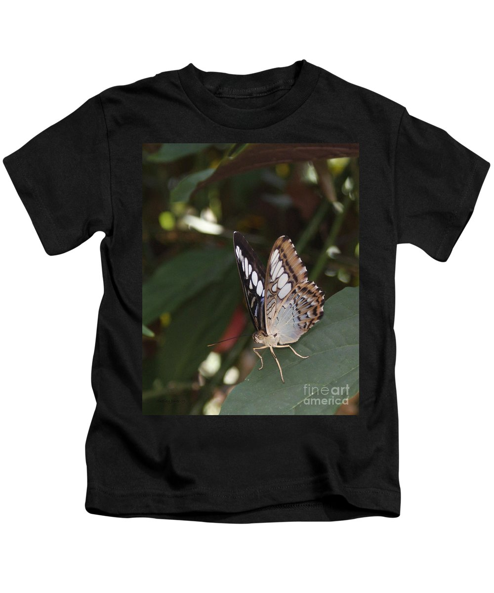 Butterfly Kids T-Shirt featuring the photograph Hints Of Blue by Shelley Jones