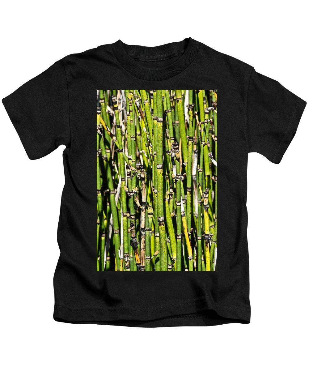 Tiwago Kids T-Shirt featuring the photograph Horsetails #2 by Photography by Tiwago