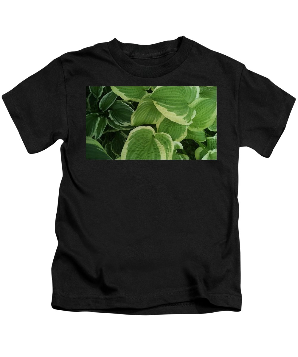 Queen Josephine Hosta Kids T-Shirt featuring the photograph Hostas Galore Too by Connie Young