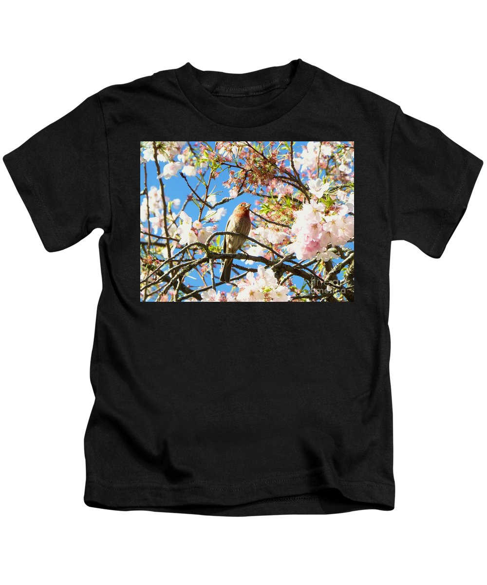 Cherry Tree Kids T-Shirt featuring the photograph House Finch In The Cherry Blossoms by As the Dinosaur Flies Photography