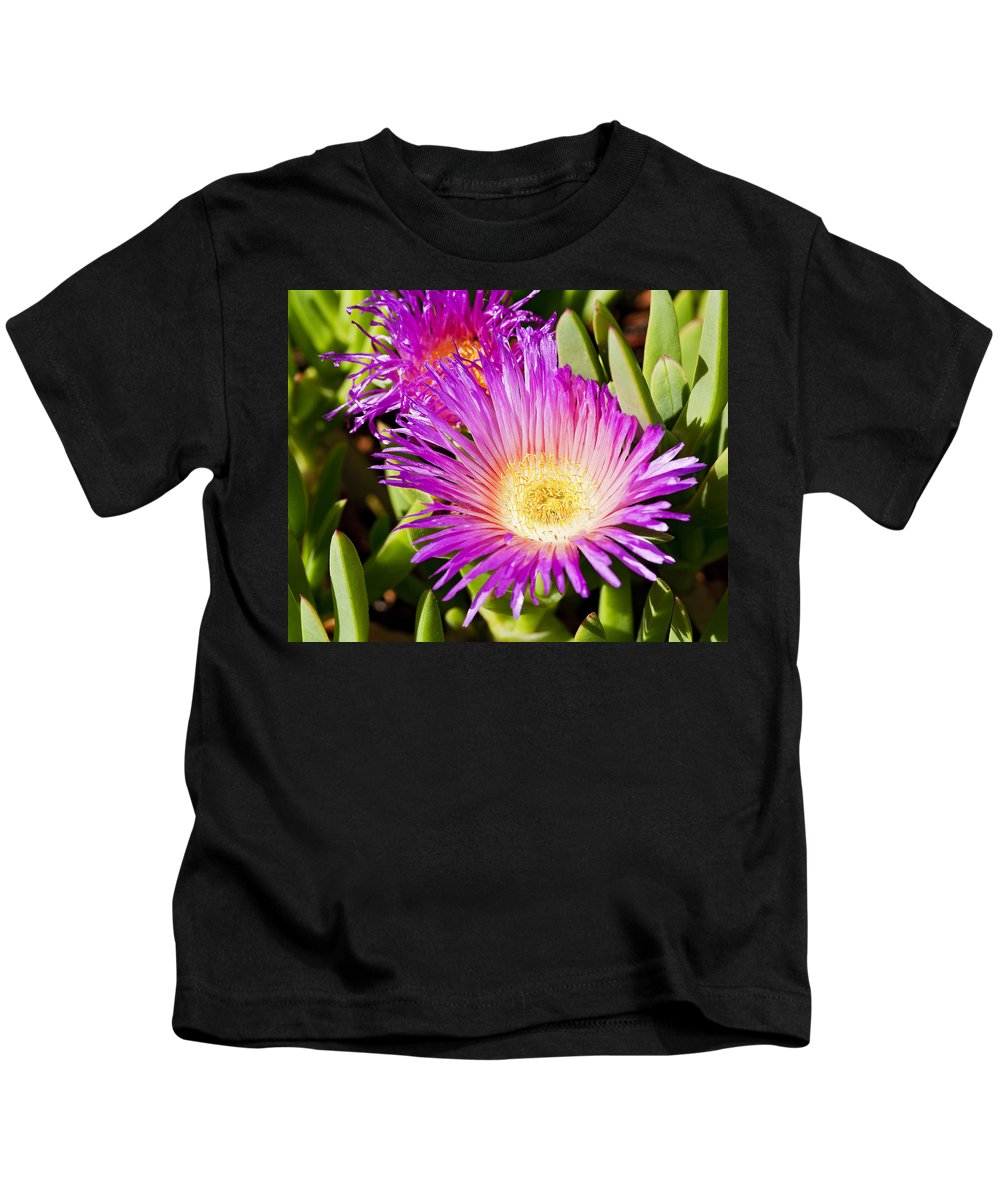 Ice Plant Kids T-Shirt featuring the photograph Ice Plant Blossom by Kelley King