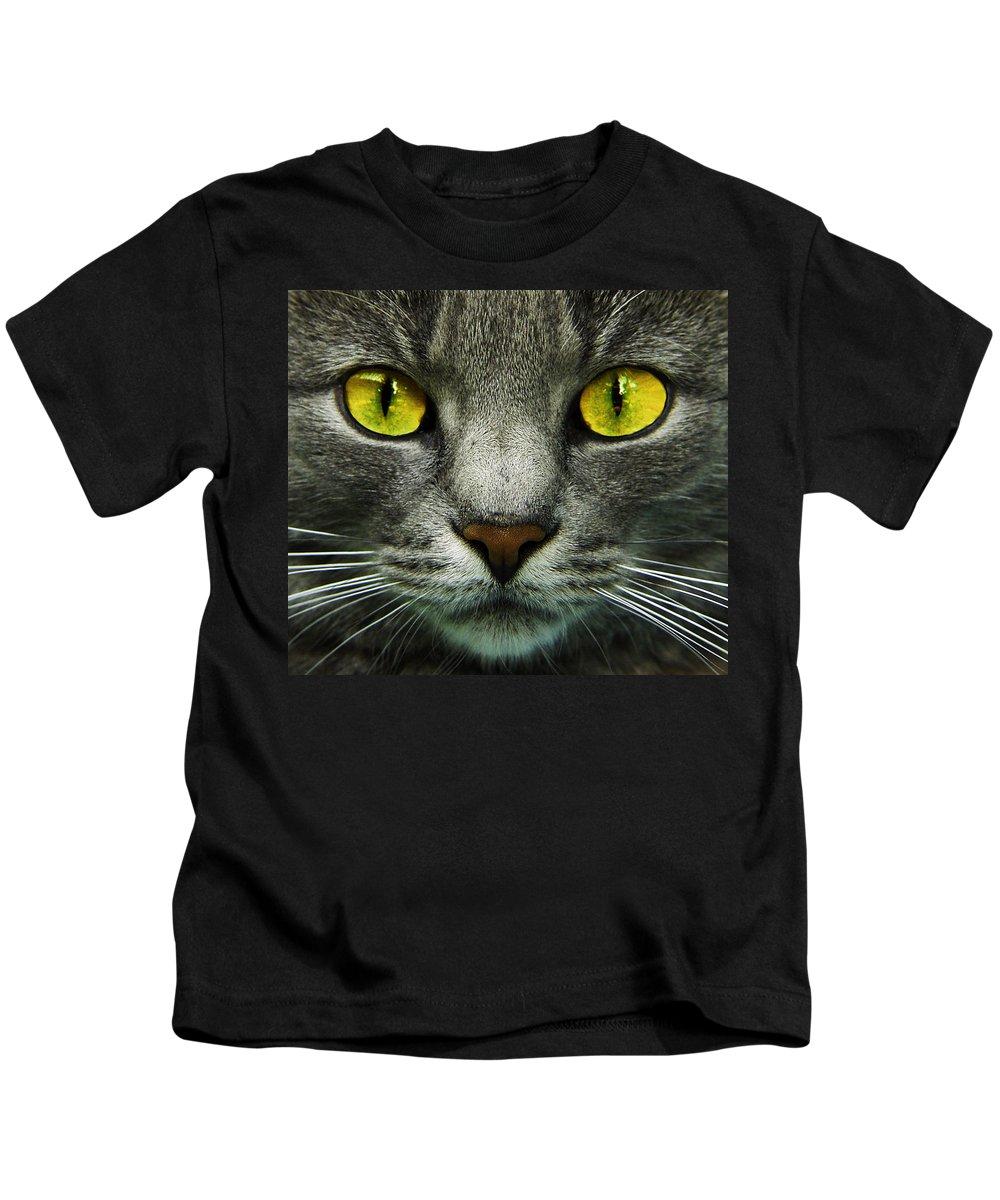 Cats Kids T-Shirt featuring the photograph I.c.u. by Joachim G Pinkawa