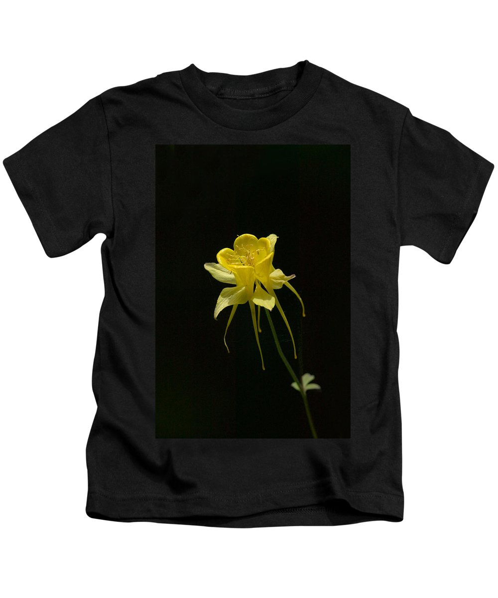 Floral Kids T-Shirt featuring the photograph Ilumination by Randall Ingalls