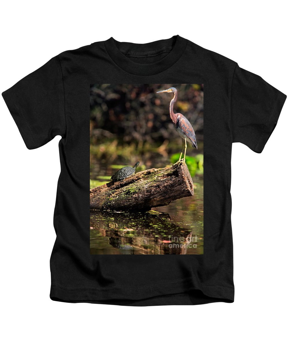 Immature Kids T-Shirt featuring the photograph Immature Tri-colored Heron And Peninsula Cooter Turtle by Matt Suess