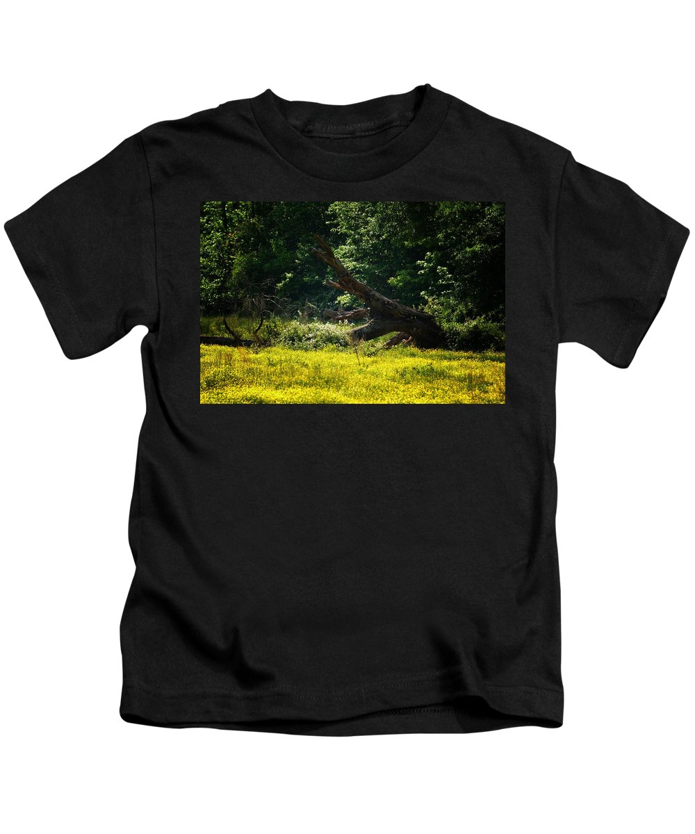 In A Field Of Gold Kids T-Shirt featuring the photograph In A Field Of Gold by Maria Urso