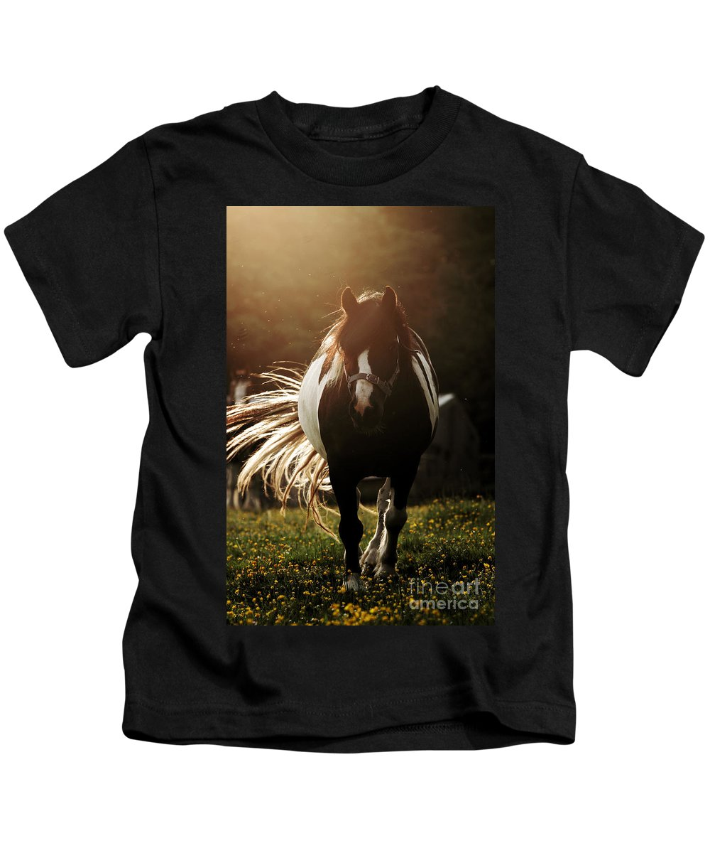 Horse Kids T-Shirt featuring the photograph In The Last Rays Of Setting Sun by Angel Ciesniarska