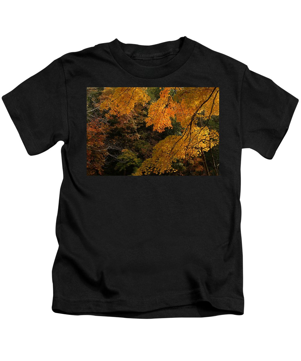Autumn Kids T-Shirt featuring the photograph Into The Fall by Michael McGowan