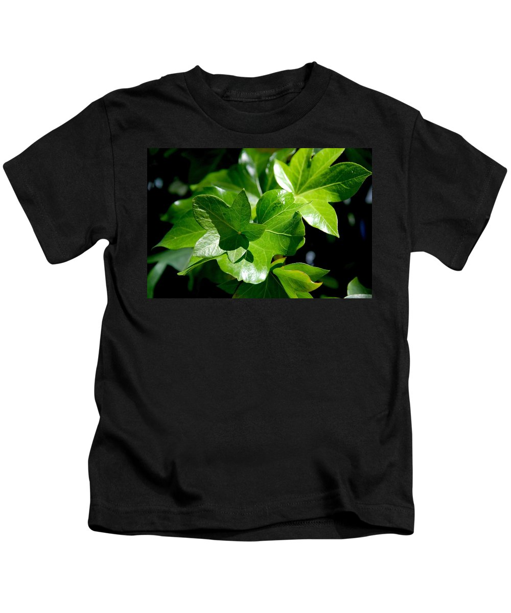 Photography Kids T-Shirt featuring the photograph Ivy In Sunlight by Susanne Van Hulst