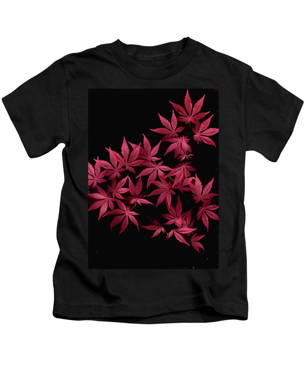 Japanese Maple Kids T-Shirt featuring the photograph Japanese Maple Leaves by Wayne Potrafka