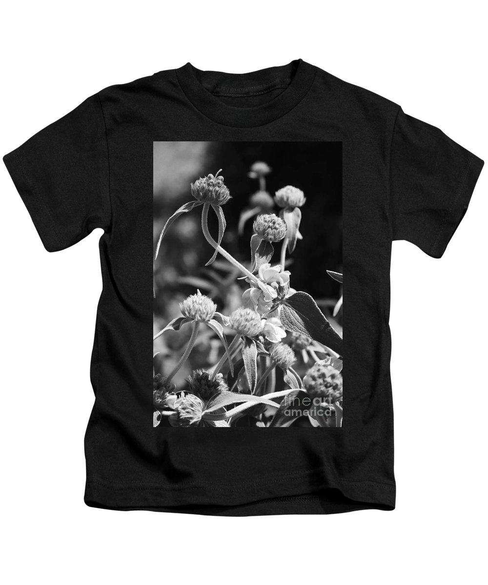 Herbs Kids T-Shirt featuring the photograph Jerusalem Sage by Kathy McClure