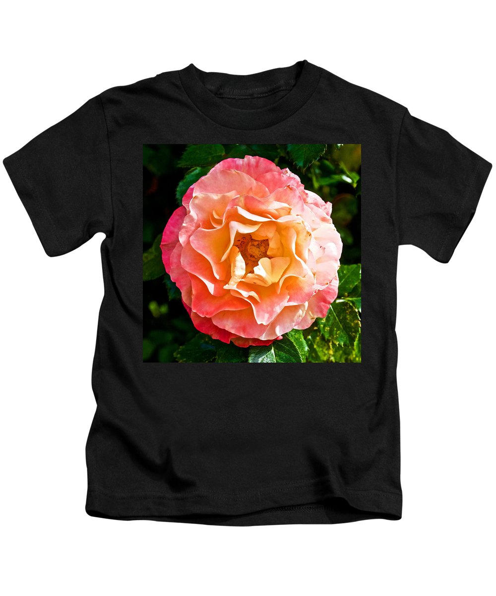 Joseph's Coat Rose At Pilgrim Place In Claremont Kids T-Shirt featuring the photograph Joseph's Coat Rose At Pilgrim Place In Claremont-california by Ruth Hager