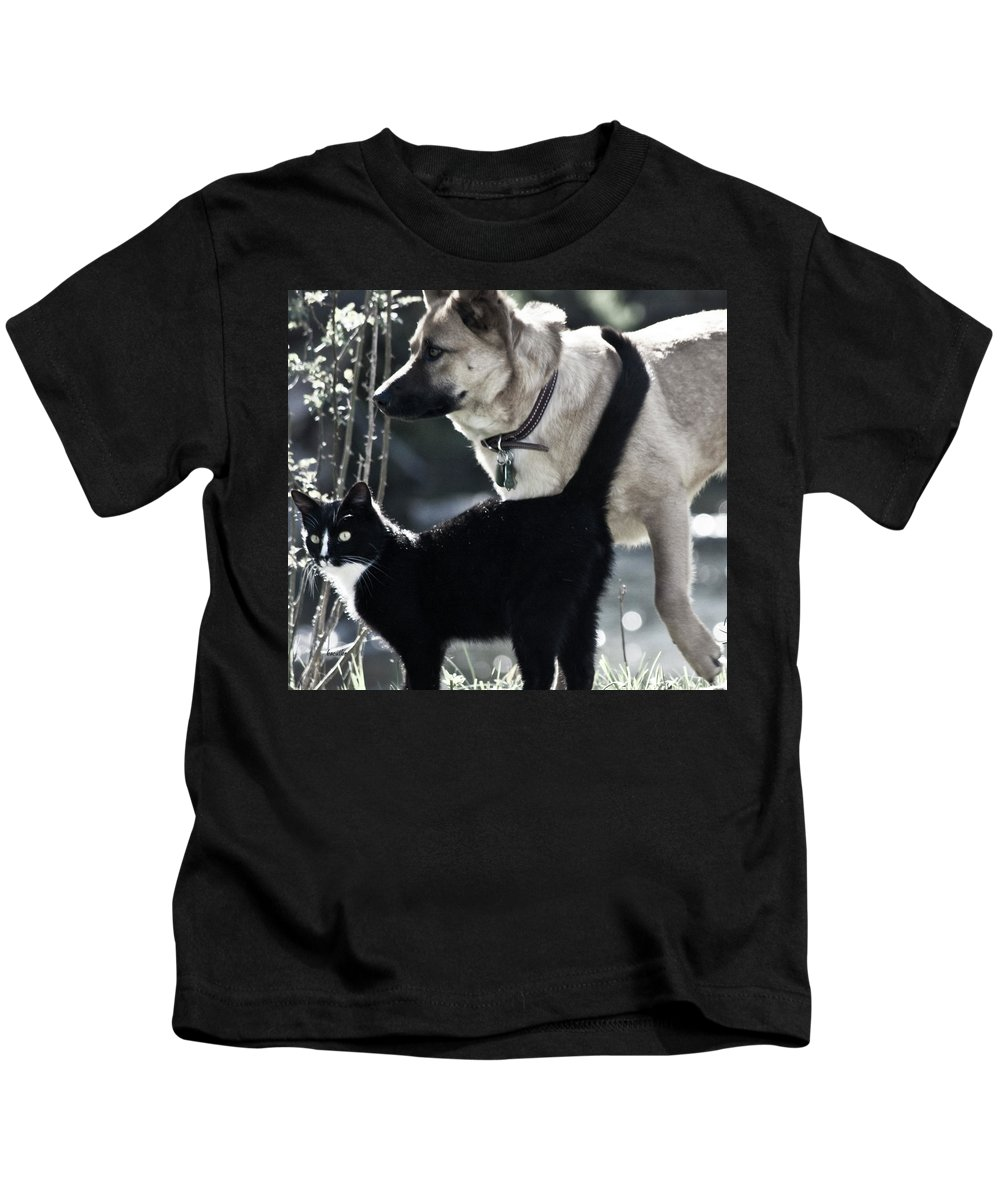 Dog And Cat Kids T-Shirt featuring the photograph Journey by Betsy Knapp