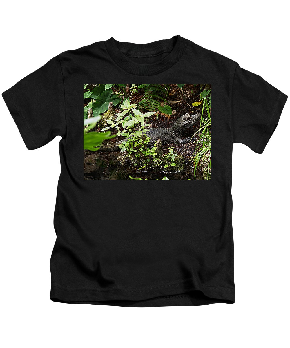 Gator Kids T-Shirt featuring the photograph Just A Little Guy by Bob Johnson