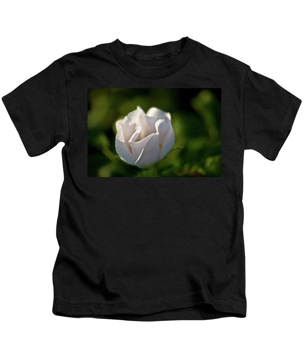 wild Rose Kids T-Shirt featuring the photograph Just White by Paul Mangold