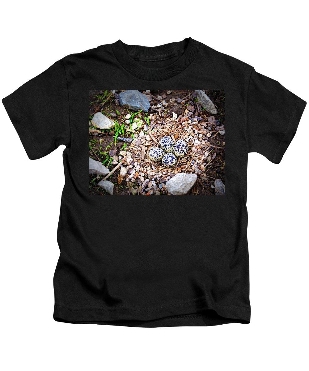 Eggs Kids T-Shirt featuring the photograph Killdeer Nest by Cricket Hackmann