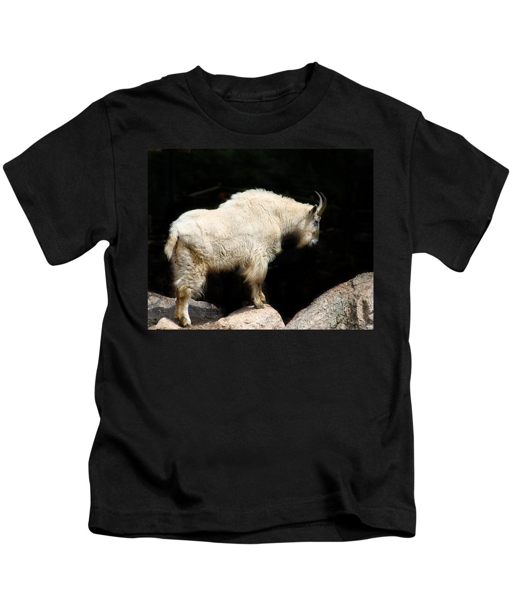 Wildlife Kids T-Shirt featuring the photograph King Of The Mountain by Anthony Jones
