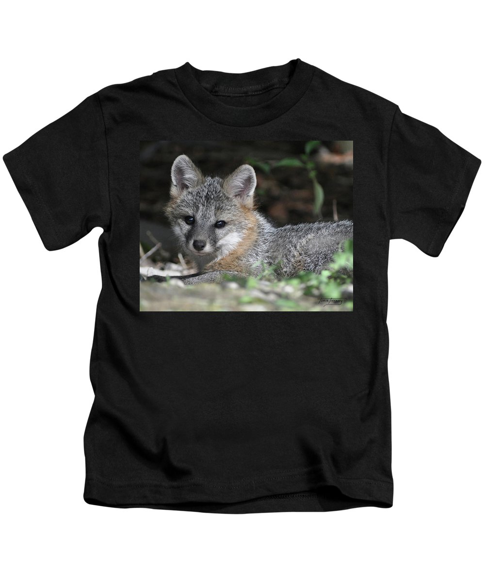 Kit Fox Kids T-Shirt featuring the photograph Kit Fox1 by Torie Tiffany