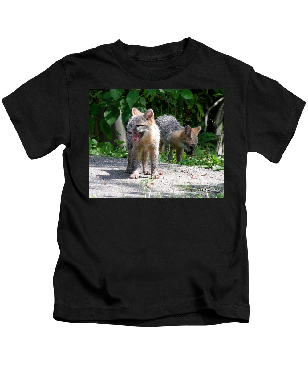 Kit Fox Kids T-Shirt featuring the photograph Kit Fox12 by Torie Tiffany