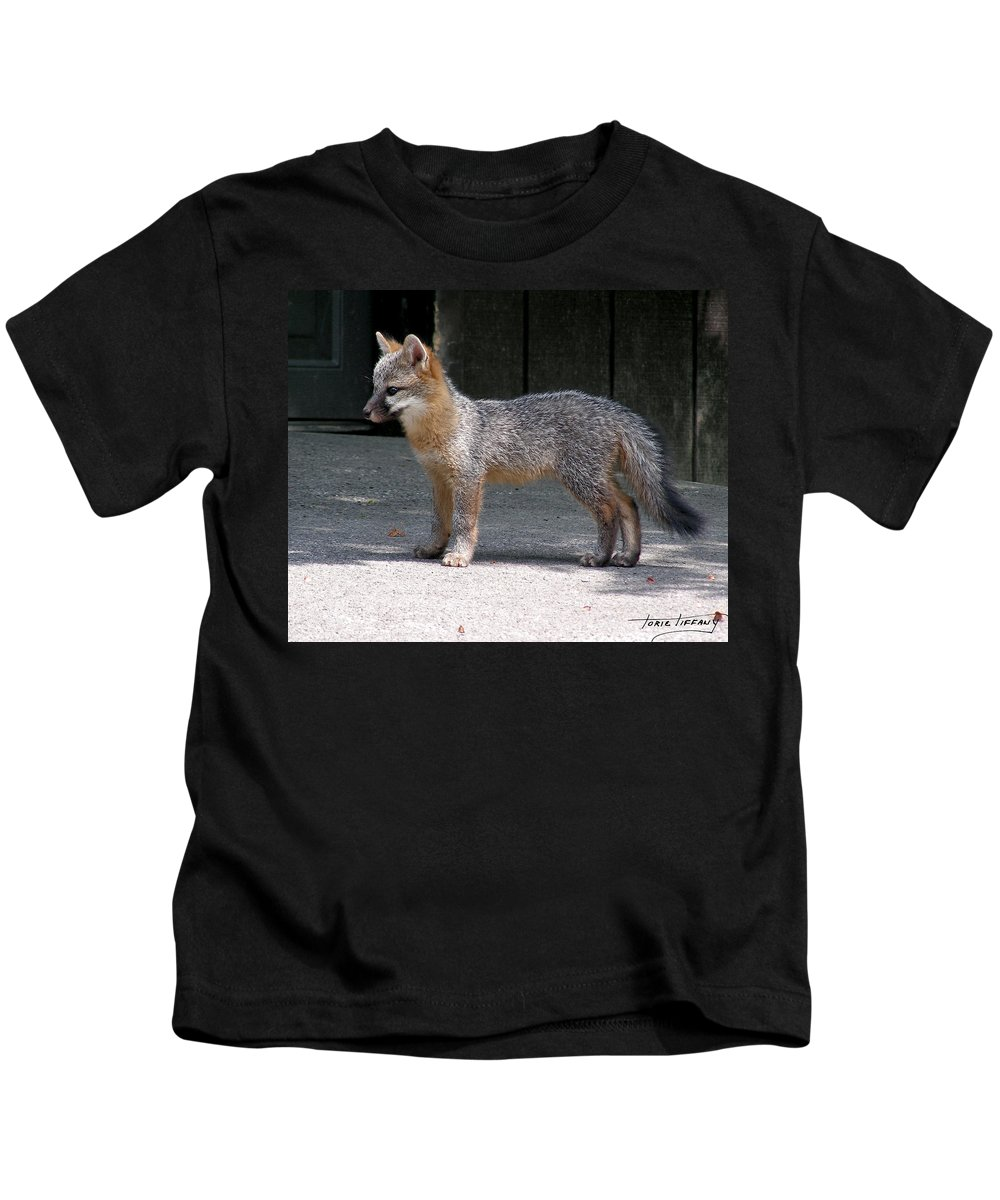 Kit Fox Kids T-Shirt featuring the photograph Kit Fox14 by Torie Tiffany