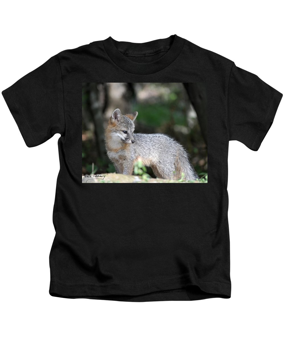 Kit Fox Kids T-Shirt featuring the photograph Kit Fox7 by Torie Tiffany