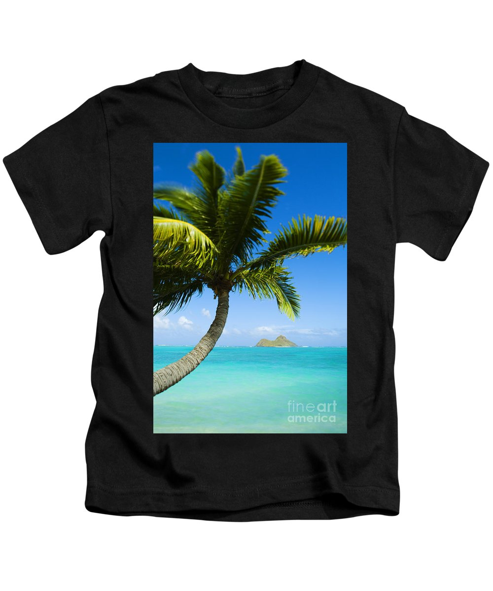 Afternoon Kids T-Shirt featuring the photograph Lanikai Palm by Dana Edmunds - Printscapes