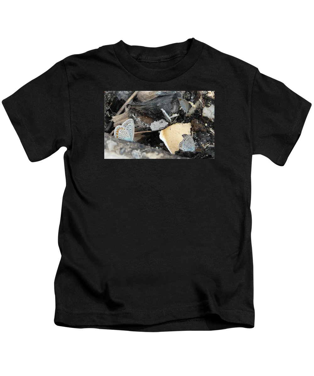 Maculinea Arion Kids T-Shirt featuring the photograph Large Blue Butterfly by Valerie Ornstein