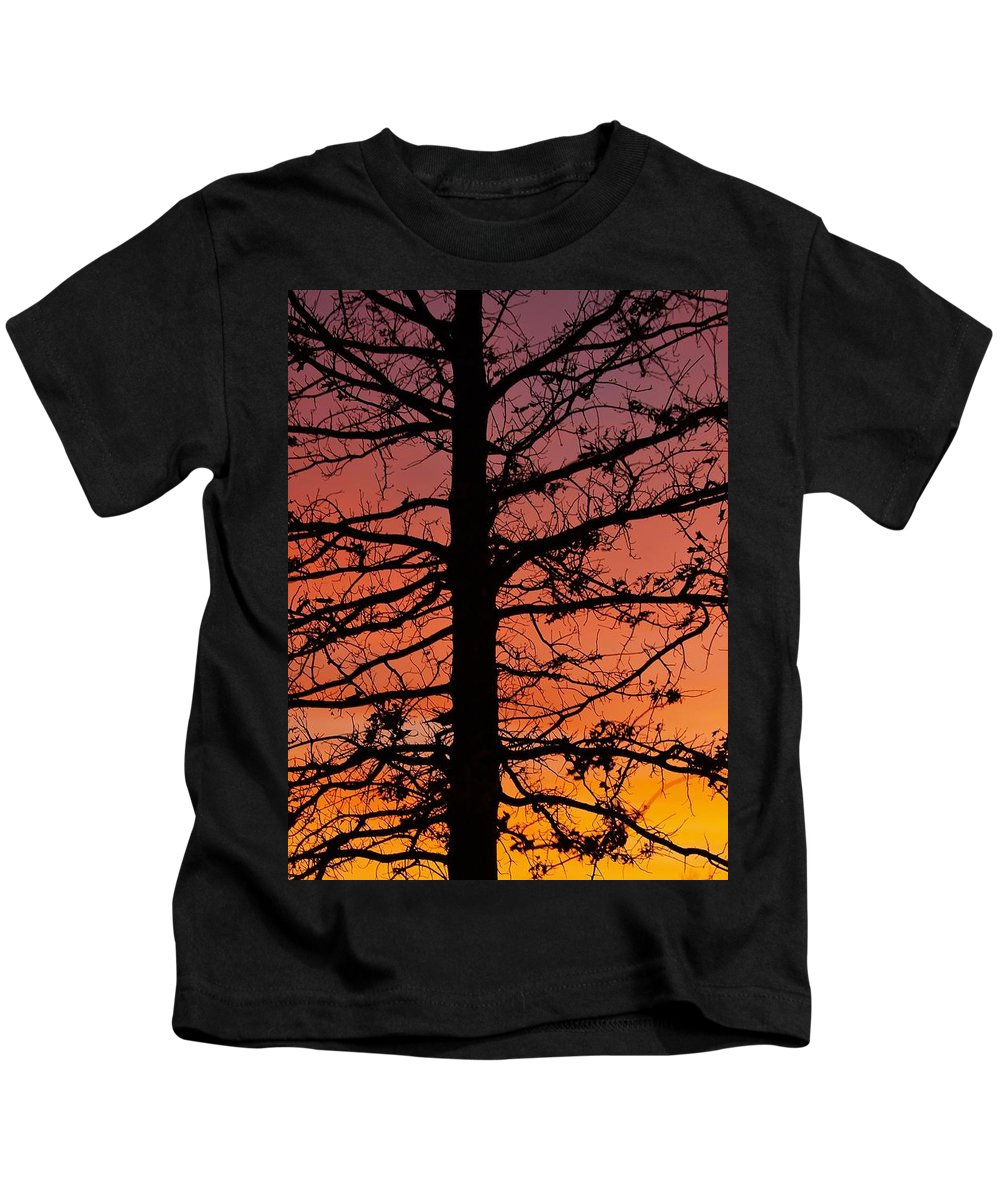 Tree Kids T-Shirt featuring the photograph Late Autumn Sunset by Denise Irving