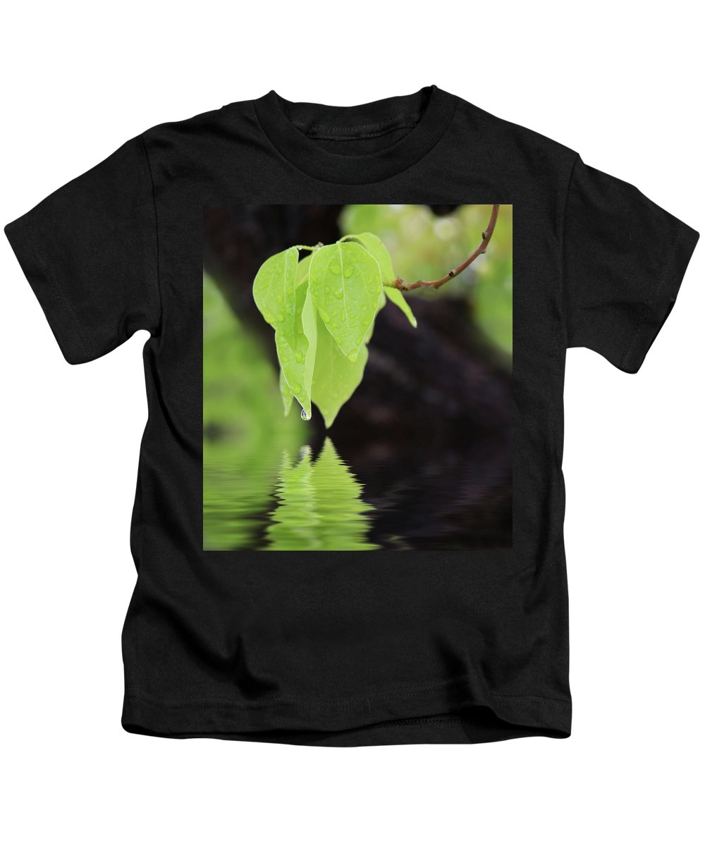 Green Kids T-Shirt featuring the photograph Leaf Drop by Erin Donalson