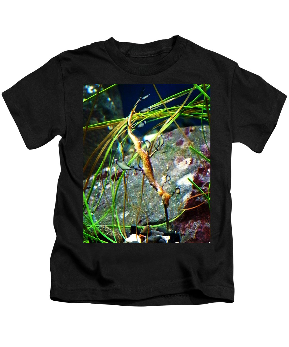 Paintings Kids T-Shirt featuring the photograph Leafy Sea Dragon by Anthony Jones