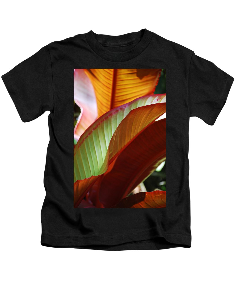 Leaves Kids T-Shirt featuring the photograph Leaves by Robert Meanor
