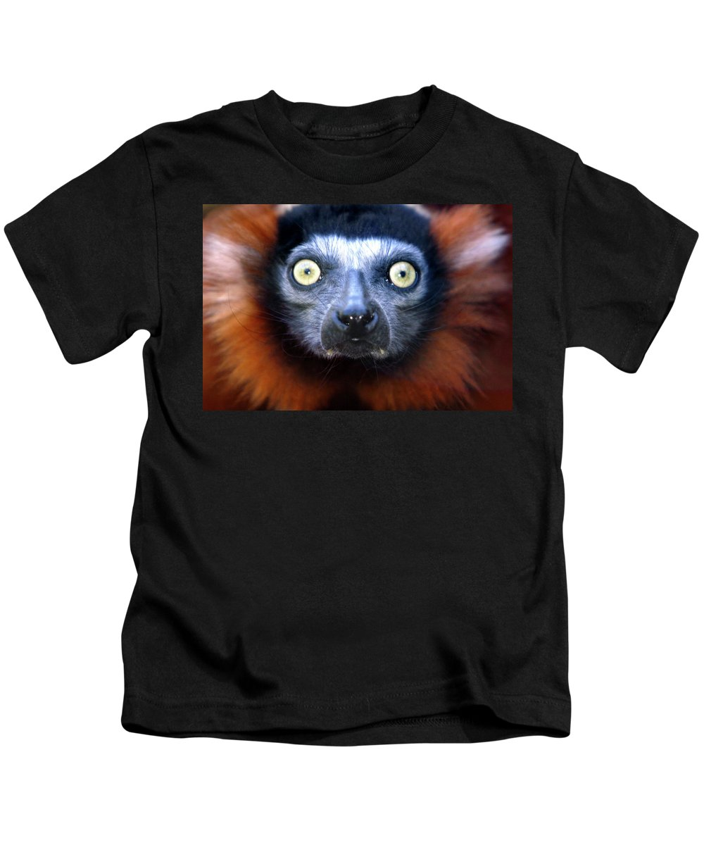 Animal Kids T-Shirt featuring the photograph Lemur Glare by Alan Look