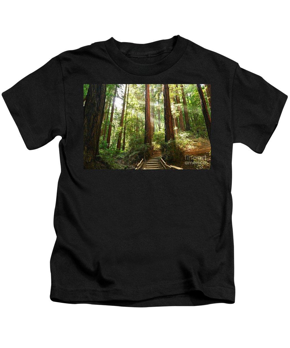 Sequoia Grove Photographs Kids T-Shirts